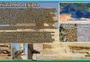 Señalando a Egipto